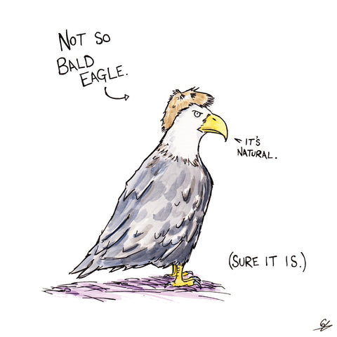 "Not So Bald Eagle (Bald Eagle wearing a wig) ""It's Natural."" (Sure it is.)"