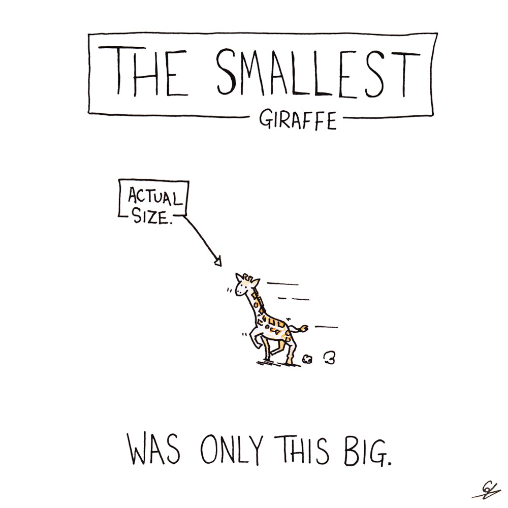 The Smallest Giraffe (Actual Size) was only this big.