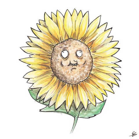 A derpy Sunflower