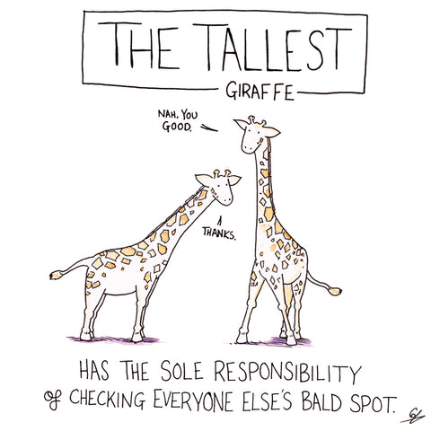 The Tallest Giraffe Has the sole responsibility of checking everyone else's bald spot.