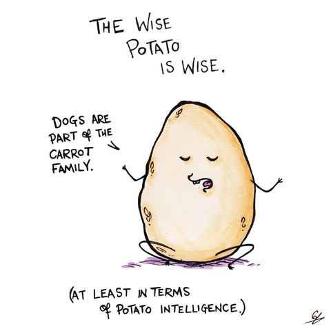 The Wise Potato Is Wise (for a potato)