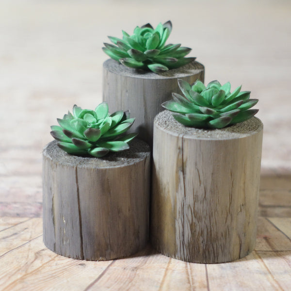Log Succulent Holder Set Gray-HOME DECOR-GFT Woodcraft