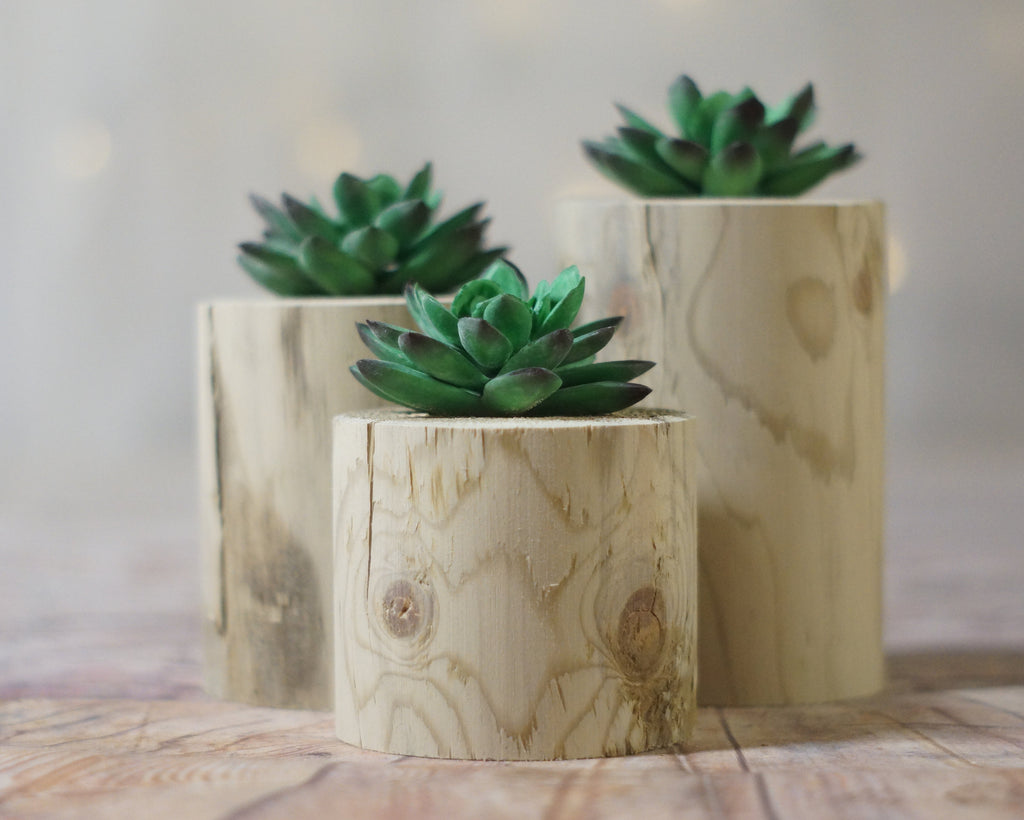 Log Succulent Holder, Log planter-HOME DECOR-GFT Woodcraft
