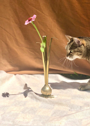 Brass Garlic Bulb Bud Vase
