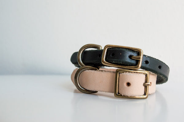 Tiny Collar - For Cats & Dogs!