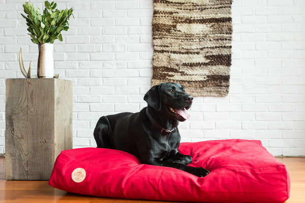 Handsome Mountain Campfire Red Pet Bed