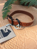 "3/4""Wide: 10-14"" Long ~ Classic Collar: Cognac"