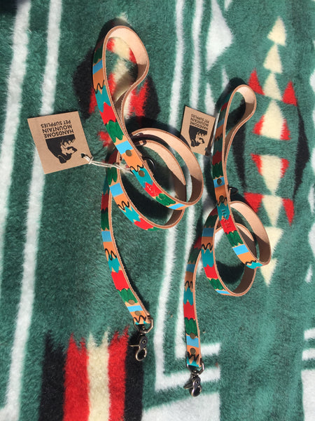"3/4""Wide: Painted Leash ~ Multi"
