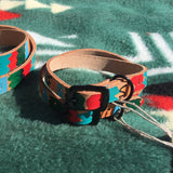 "3/4""Wide: 12-16"" Long ~ Painted Collar ~ Multi"