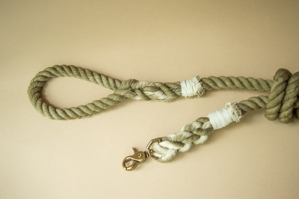 Saguaro Leash