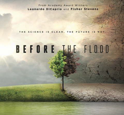 Before the Flood Screening Kit