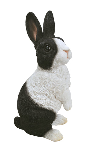 Lookout Dutch Rabbit from Vivid Arts Real Life Woodland