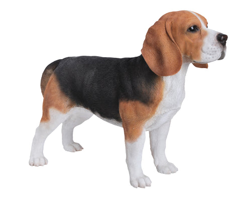 Beagle from Vivid Arts Real Life Dogs