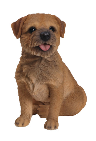 Border Terrier - Vivid Arts Real Life Dogs Collection