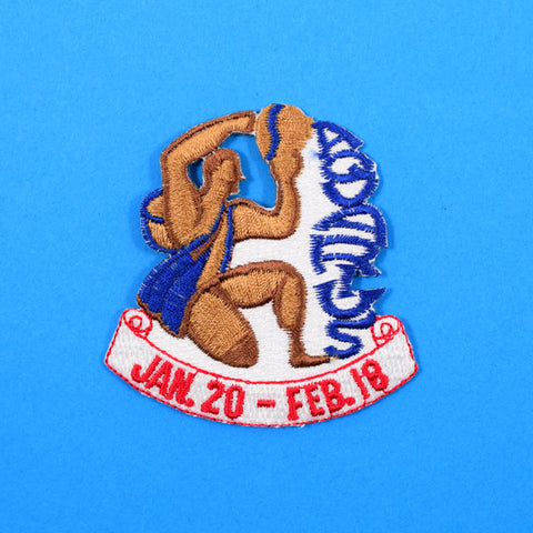 Vintage Aquarius Zodiac Patch