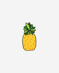 Pineapple Mini Sticky Patch