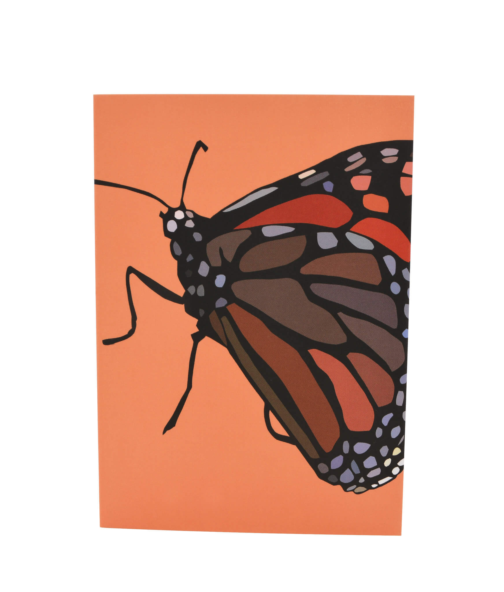 Greeting Card - Monarch butterfly 3