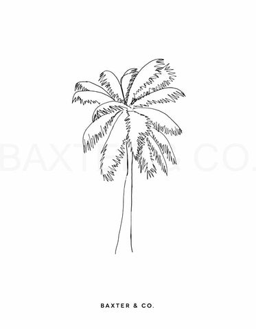Palm Tree - Baxter & Co.