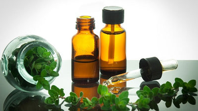 Facts About Oregano Essential Oil