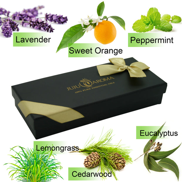 Top 6 Essential Oils Gift Set - 6 Bottles