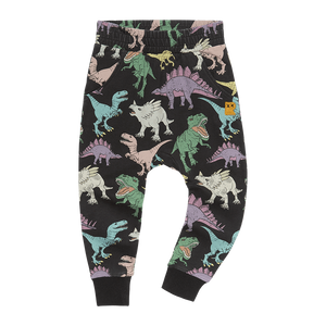 Rock Your Kid - Land Before Time Trackpants - Multi