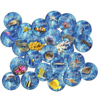 Into the Sea Stow N Go Carpet Rounds Set of 24