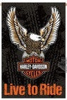 13S4907FB H-D® Live To Ride Flag