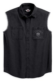 99139-10VM H-D Men's Skull Blowout