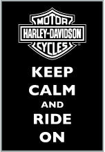 168203 H-D® Harley-Davidson® Keep Calm Pin