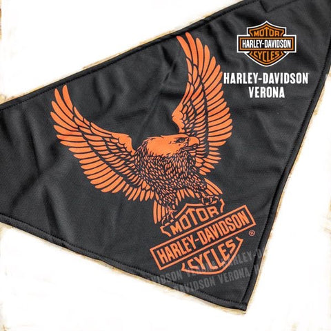BAC32866🔹 Bandana Harley-Davidson® Upwing Eagle 3-in-1