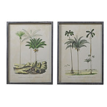 Load image into Gallery viewer, Set of 2 Framed Palm Prints