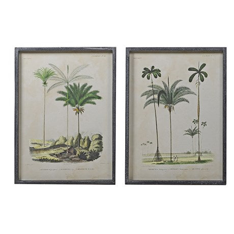 Set of 2 Framed Palm Prints