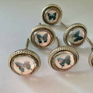 Butterfly Drawer Knobs Set of 6