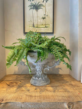 Load image into Gallery viewer, Faux Fern Plant