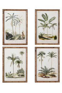 Set of Four Palm Tree Prints
