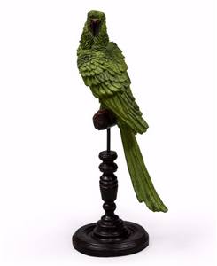 Green Parrot on a Perch