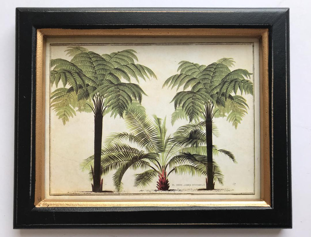 Framed Palm Print Small OUT OF STOCK
