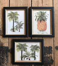 Load image into Gallery viewer, Framed Pineapple Print Small