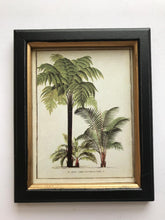 Load image into Gallery viewer, Framed Palm Print Small (Vertical) OUT OF STOCK