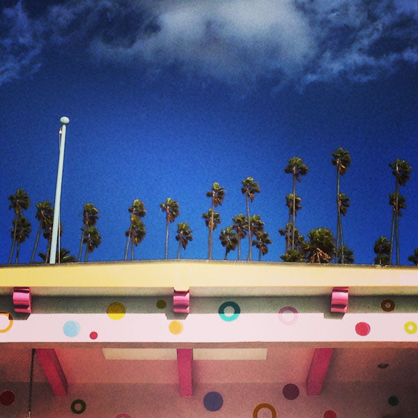 Bright color trends, candy colored, palm trees