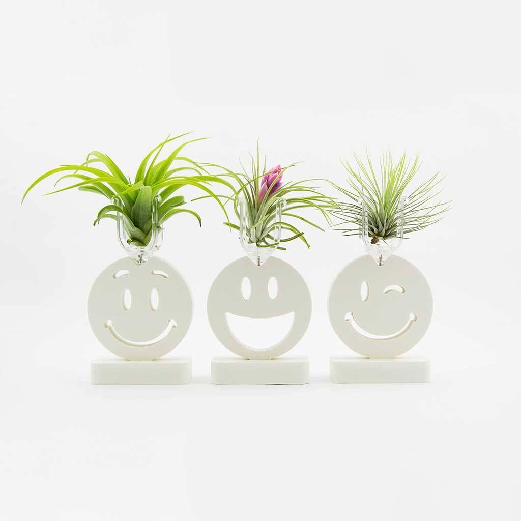 Decor - Happy Faces