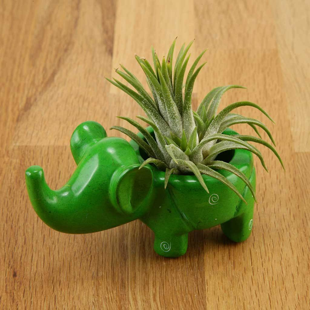 Gifts - Soapstone Elephant Planter