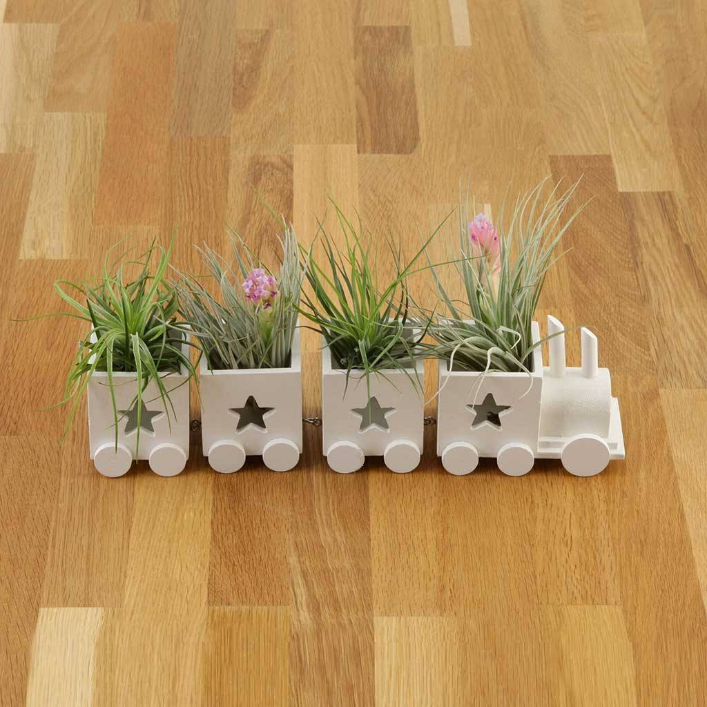 Gifts - Train Planter