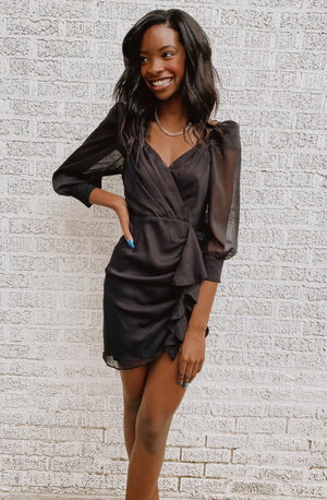 HIGH STANDARDS SHEER SLEEVED DRESS
