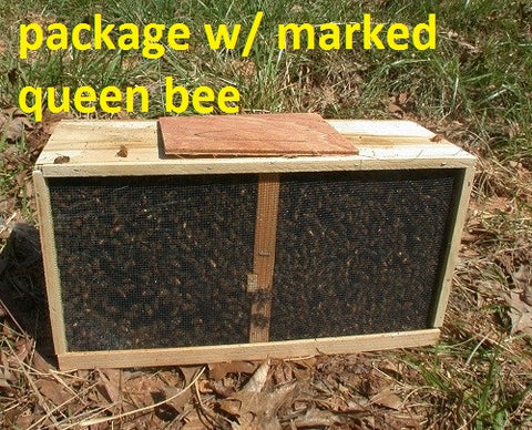 3 Lbs. Package of Italian Honey Bees with MARKED Queen