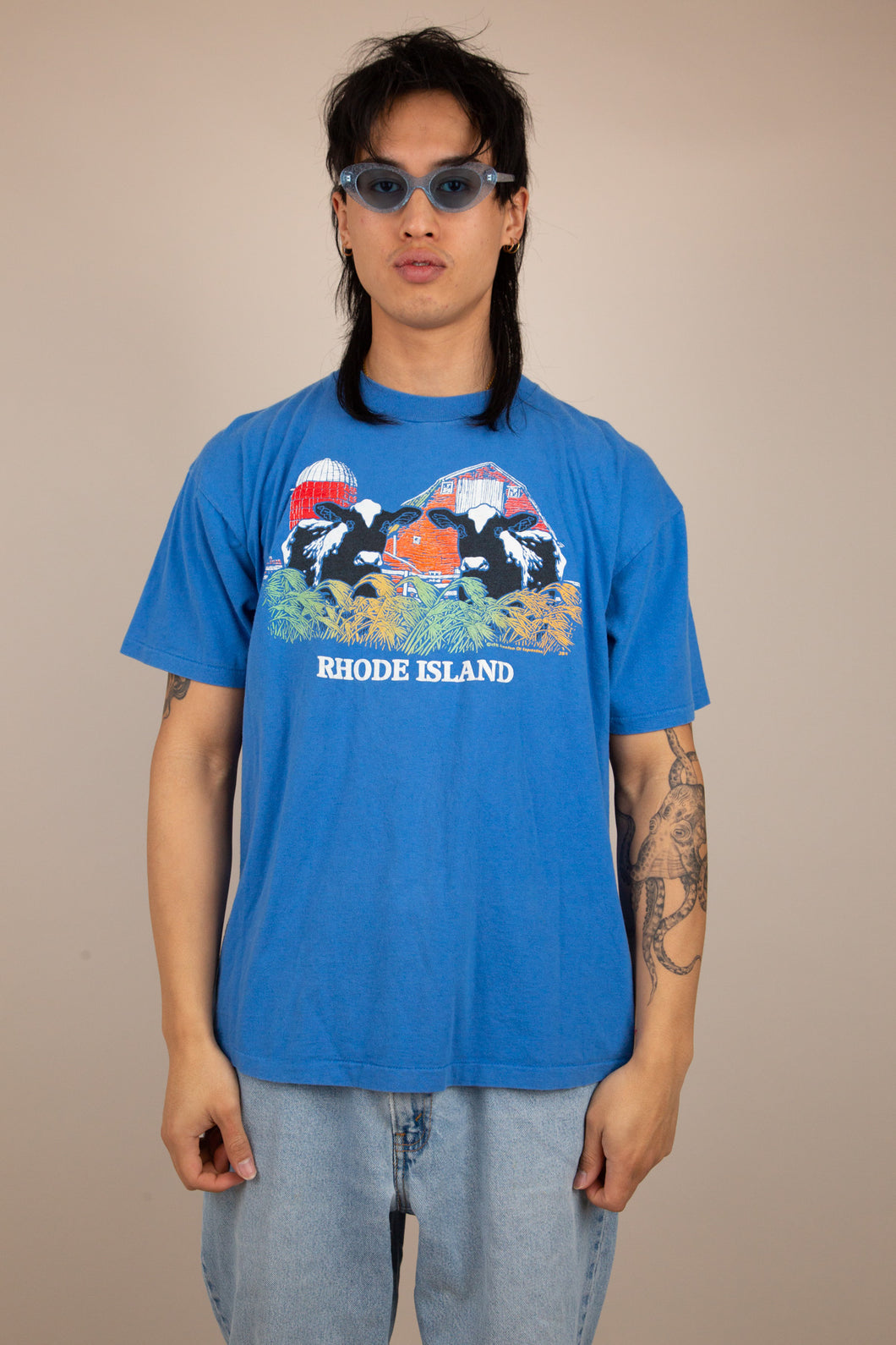 Blue tee with a graphic of some cows on the front and the text