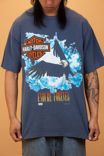faded blue tee with harley davidson and eagle graphic on the front