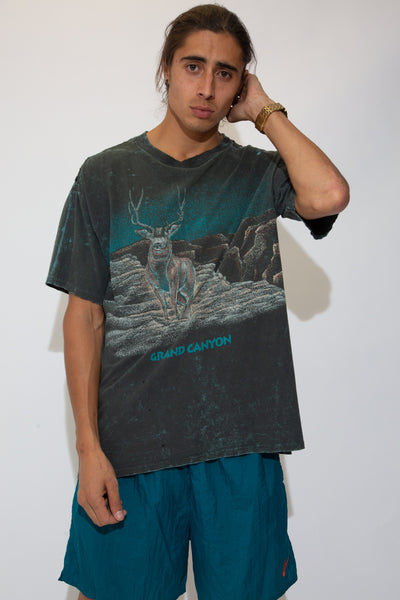 Distressed Grand Canyon Tee