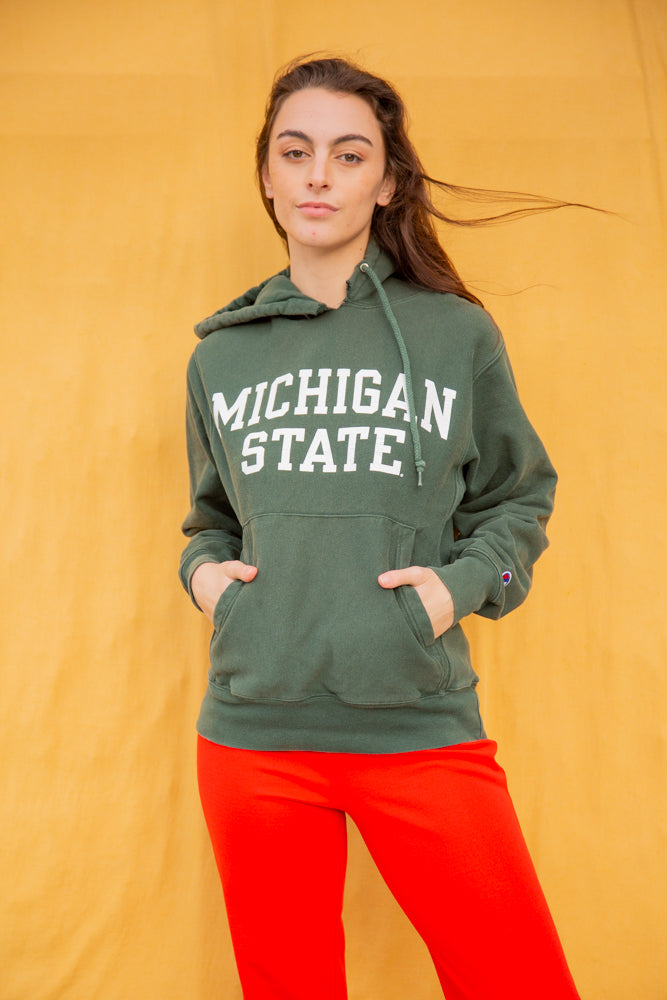 Champion Michigan Hoodie