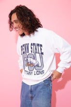 Load image into Gallery viewer, Penn State Lions Sweater